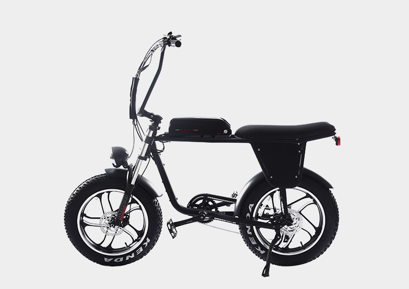 two seat seater fat tire electric bicycle