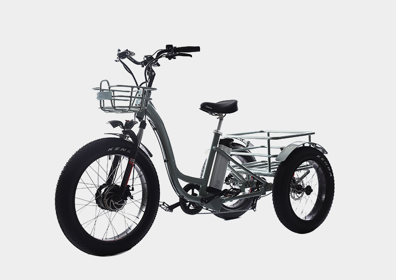Hot selling front drive motor front and rear strong basket electric cargo tricycle trike